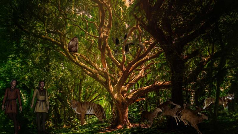 A holistic approach to biodiversity conservation