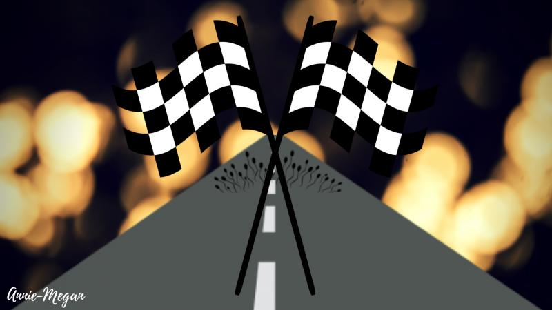The Rush for the Final Race
