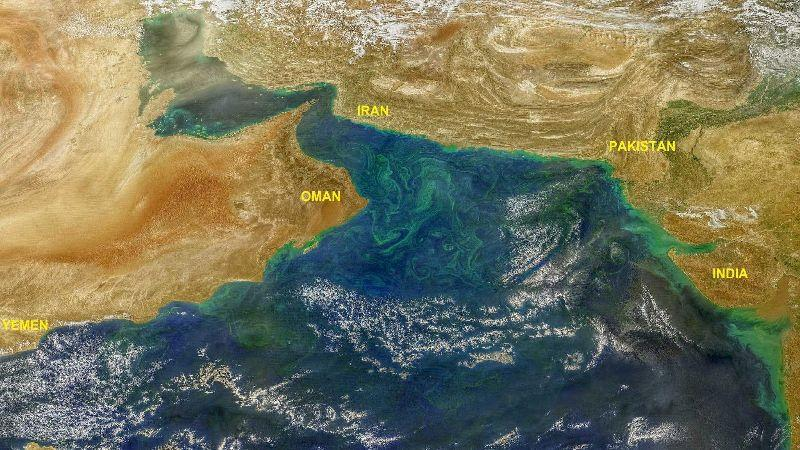 Snow meltdown in the Himalayas is causing sparkling algal blooms in the Arabian Sea