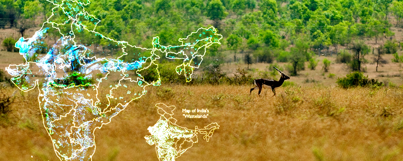 Comparative maps showing the extent of ONEs and wasteland categories in India;  Blackbuck - an endemic species of ONEs Original pictures of Map and Blackbuck - Authors of the paper